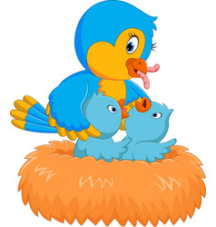 baby bird in the nest vector image