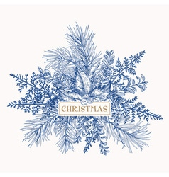 Greeting card with pine branches holly berries and vector image
