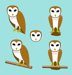 Set of barn owl on branch in flat style vector