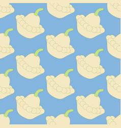 Squash vegetable pattern vector