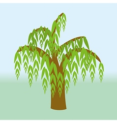 Weeping willow vector