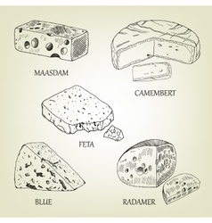 Realistic graphic cheese collection vector image vector image