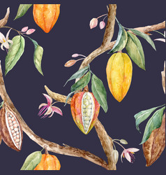 watercolor cocoa pattern vector image