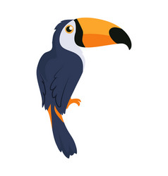 toucan bird cartoon icon in flat design vector image vector image