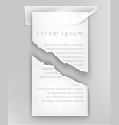 Torn paper for text ripped sheet vector