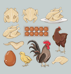 chicken icons set vector image vector image