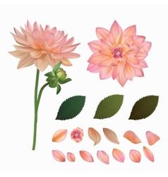 Flower mesh vector image vector image