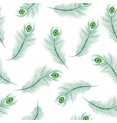 Peacock feather seamless texture peacock feathers vector image