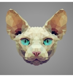 Sphynx cat low poly portrait vector image vector image