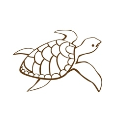 Stylized turtle vector image vector image