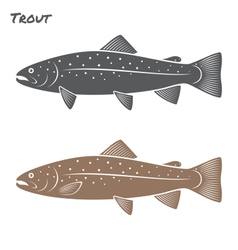 Trout fish vector
