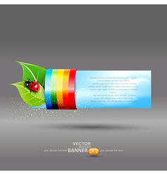 banner with leaves and ladybug vector image vector image