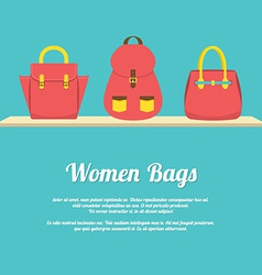 Colorful women handbags display on shelf vector
