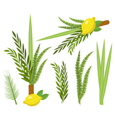 happy sukkot set collection of objects design vector image