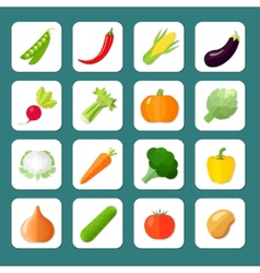 Vegetables icon flat vector