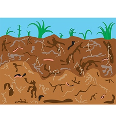 Worms underground vector