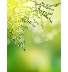 Beautiful nature bokeh eps 10 vector