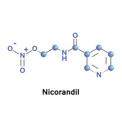 Nicorandil is a vasodilatory drug vector