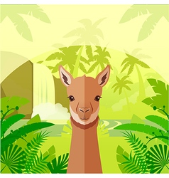 Vicuna on the jungle background vector
