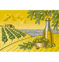 Olive harvest landscape vector image