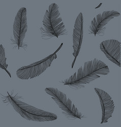 feathers in seamless pattern stock vector image vector image