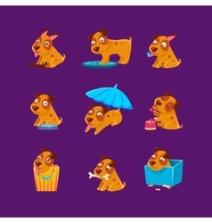 Pet puppy everyday activities collection vector