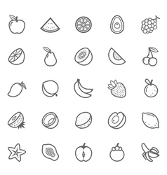 Set of Outline stroke Fruit icon vector image