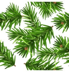 Green christmas pine tree branch seamless vector