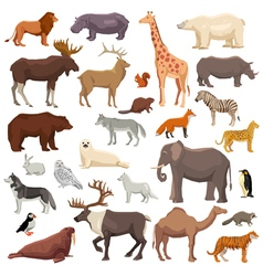Animals Big Set vector image