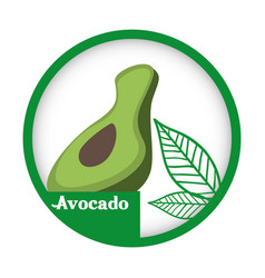 Avocado fresh healthy label vector