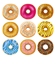 realistic donuts set vector image