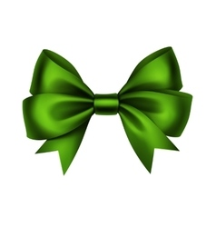 Green satin gift bow isolated on white vector