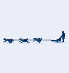 sled dogs graphic vector image