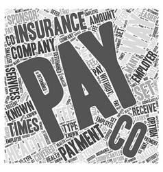 Ways of paying for health insurance word cloud vector