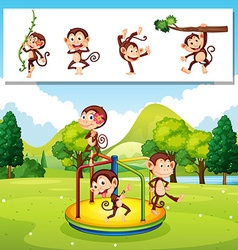 Monkeys playing in the park vector