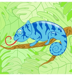 Chameleon on a branch against leaves EPS10 vector image