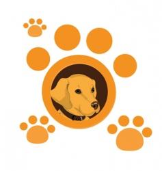 dog portrait vector image vector image