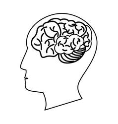 human head brain outline vector image