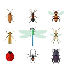 Icon set of insects in flat style vector