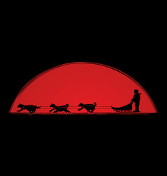 sled dog graphic vector image