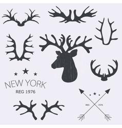 Deer horns set vector image