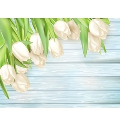 Fresh white tulips on wood planks EPS 10 vector image vector image