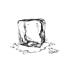 Hand draw ice cuben vector