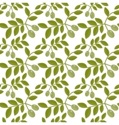 Seamless pattern green olives olive endless vector
