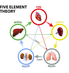 Five element theory vector