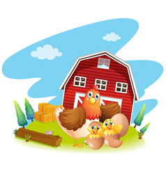 Chicken and chicks on the farm vector