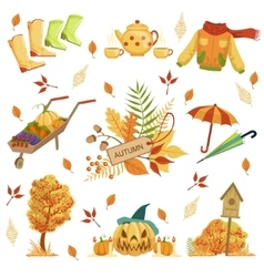 Set of autumn related objects vector
