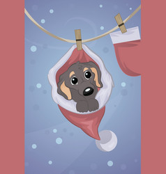 small dog in santa claus hat sitting vector image
