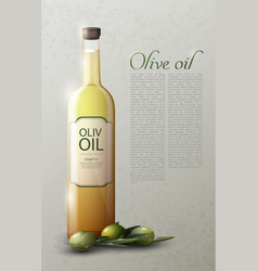 Natural olive oil realistic template vector