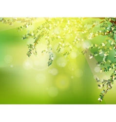 Fresh green leaves on natural EPS 10 vector image
